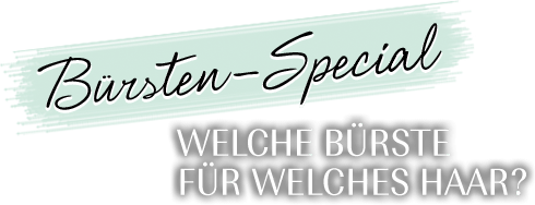 Bürsten-Special