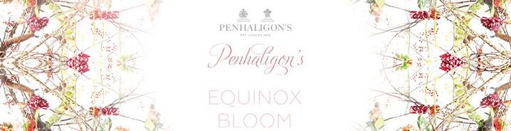 Equinox Bloom